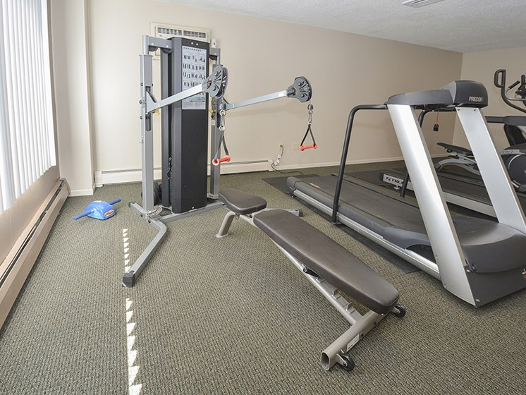 Weight Machine and Bench at the Fitness Center