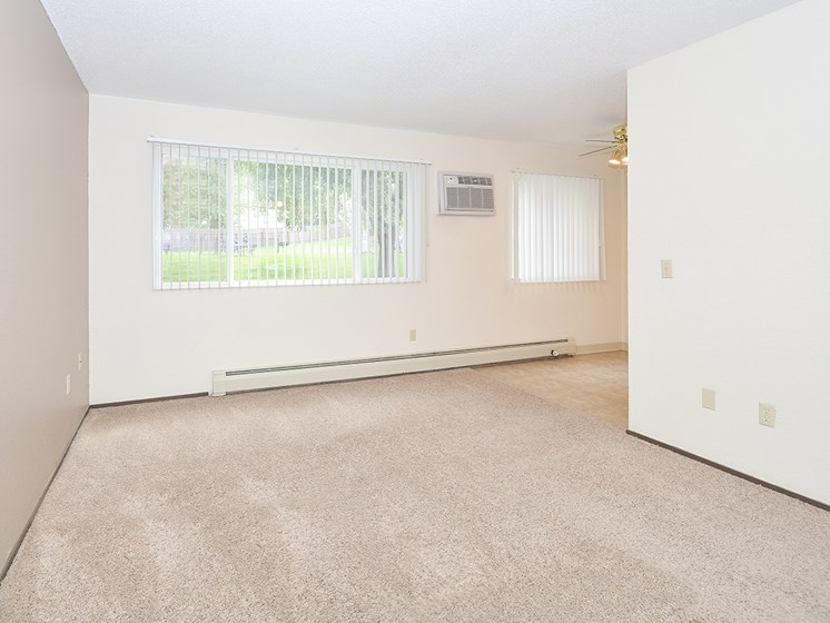 Living Room with Plush Carpeting
