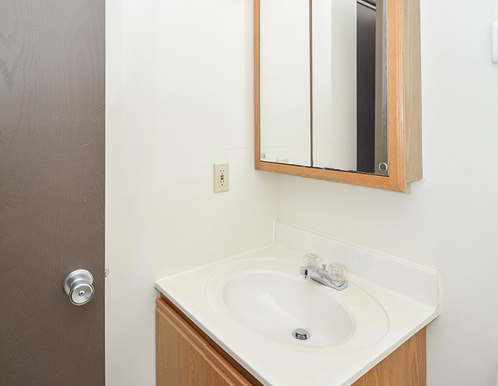 Bathroom Vanity with Mirrored Medicine Cabinet