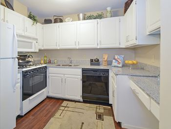 301 Shelard Pkwy Studio-3 Beds Apartment for Rent Photo Gallery 1