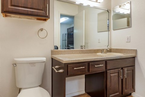 The Arbors of Euless|Bathroom