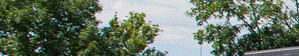 Columbus banner 1