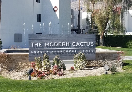 The Modern Cactus Community Thumbnail 1