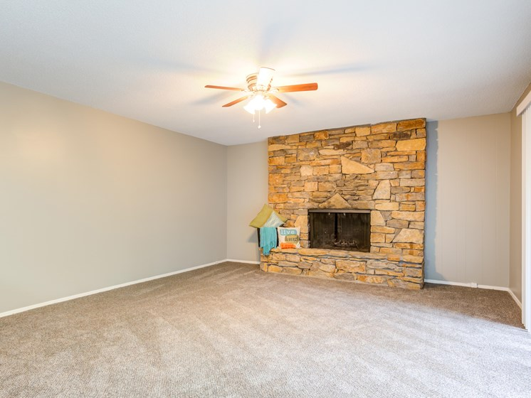 Natural Stone Fireplaces-Apartment
