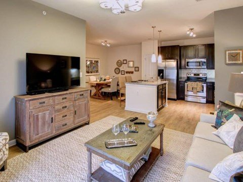 Open Design Floor Plans and 9' Ceilings at Alexander Village, Charlotte, NC