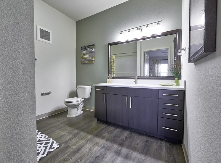 Custom Vanity Lighting at Carrick Bend, Colorado, 80233