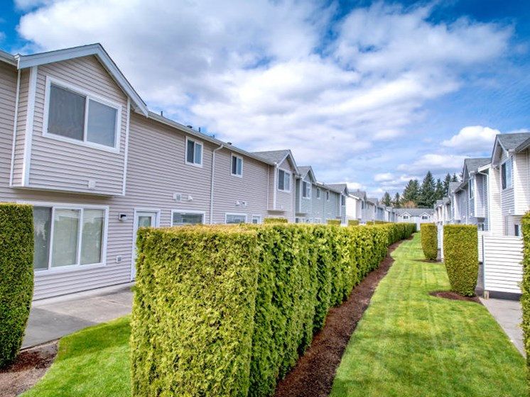 Enjoy your private patio landscaped with tall shrubbery