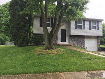 1419 Mutz Dr 3 Beds House for Rent Photo Gallery 1