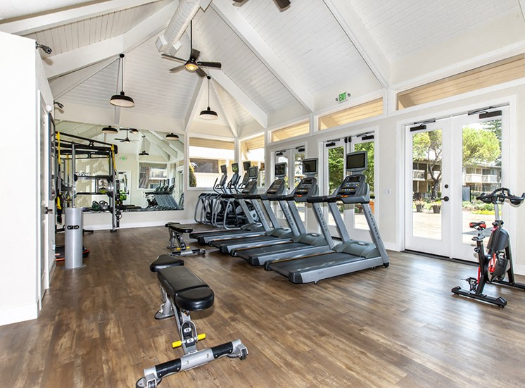 Gym with treadmills and ellipticals with screens weight bench, weight machine, rack and stationary bike