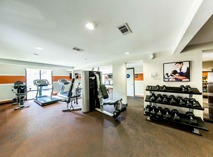 Fitness center with rack of free weights, treadmills, exercise bikes, and strength training machines