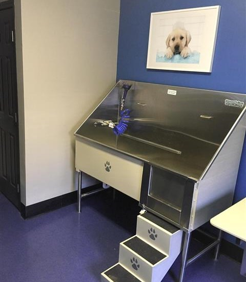 Pet Spa at The Prato at Midtown Apartments in Atlanta, GA