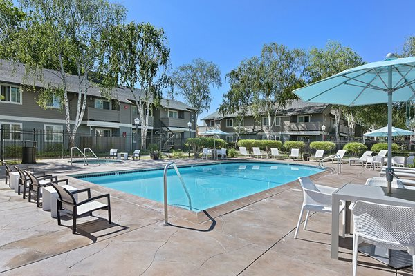 Pool at Sora Apartments in Union City CA