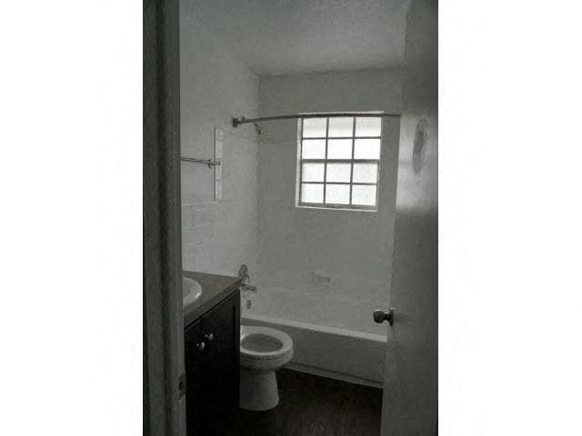 Bright Bathroom Windows