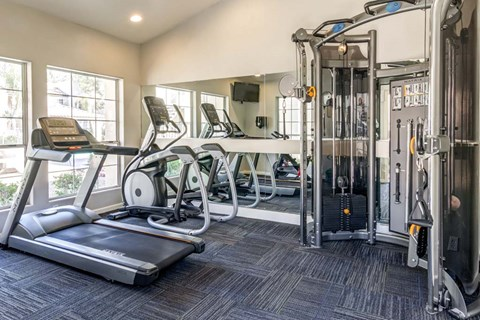 The Palms Apartments Fitness Center with cardio equipment and weight machines