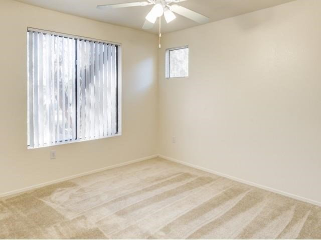 Ingleside Apartments bedroom with wall to wall carpet, a ceiling fan, and large window