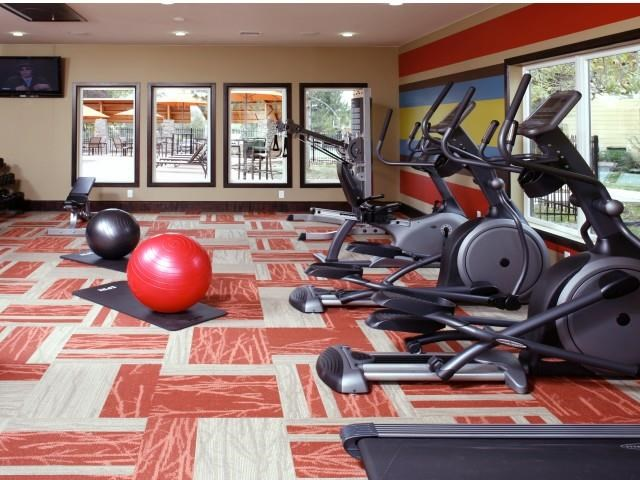 Copper Flats Apartments fitness center with orange and white carpet, cardio equipment and bosu balls. Background includes windows looking at the pool