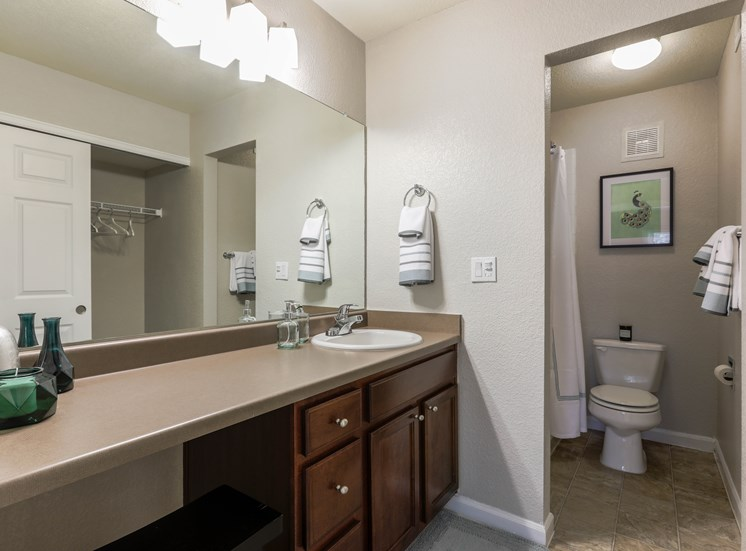 master bathroom with large countertop and huge mirror. separate space for toilet and shower
