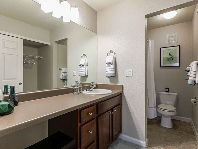 Copper Flats Apartment Homes Spacious Master Bathroom with Ample Storage and Counter Space, Attached Walk-in Closet, and Large Mirror
