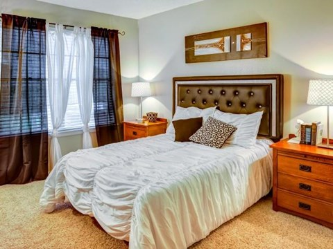 Bedroom with plush carpeting