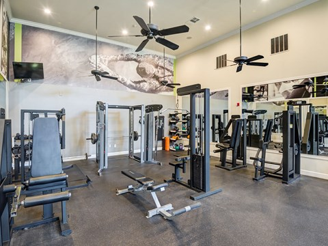 State of the art fitness center with cardio equipment and weight machines