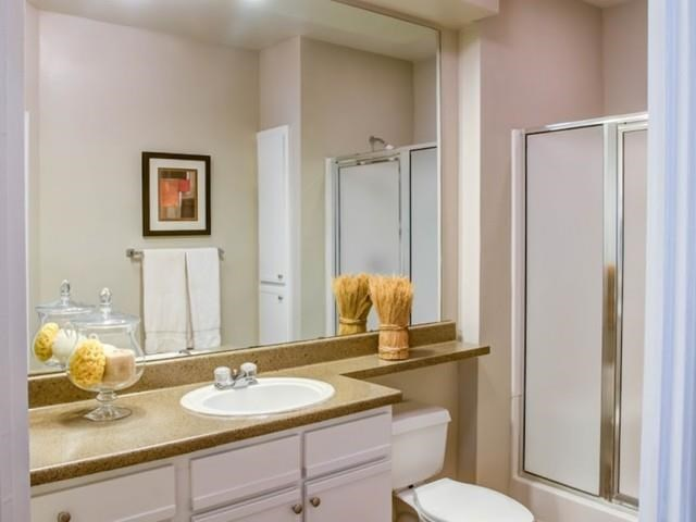 Bathroom with large vanity and standing shower