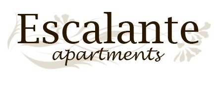 San Antonio Property Logo 28
