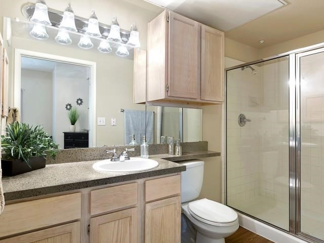 Bathroom with vanity and standing shower