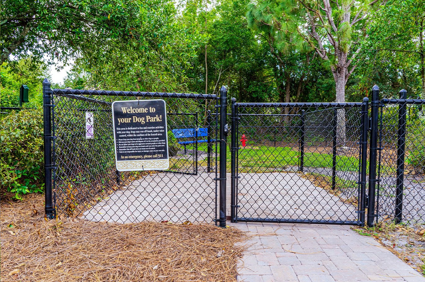 Photos and Video of The Preserve at Pine Valley in ...