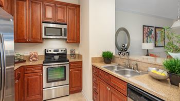 9734 Tapestry Park Circle 1-3 Beds Apartment for Rent Photo Gallery 1