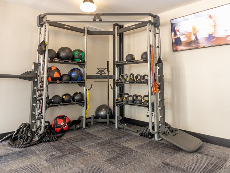 Everyone gets access to the free weights and equipment in our Fitness Center.