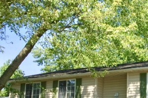 8926 Cherrywood Ct 3 Beds House for Rent Photo Gallery 1
