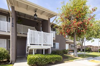 Linda Vista Apartments For Rent San Diego Ca Rentcafé