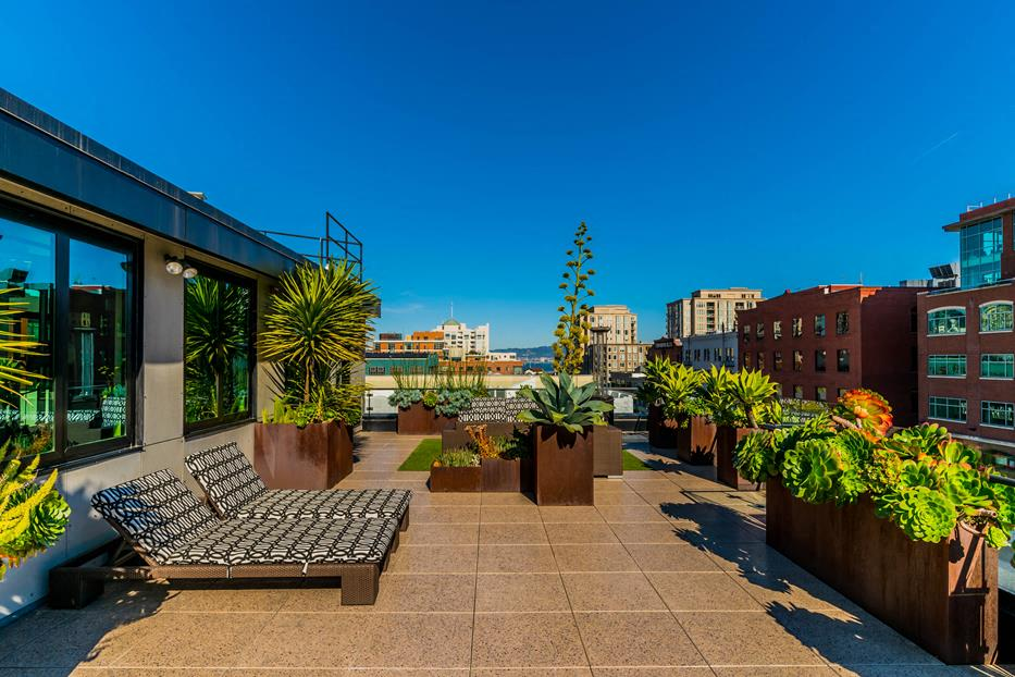 Rooftop Decks Custom Spa, Grilling Area, Enclosed Dog Run & Magnificent City Views at Arc Light, San Francisco