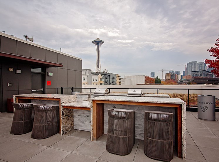 Rooftop Deck At Clarendon Apartments in Seattle, WA