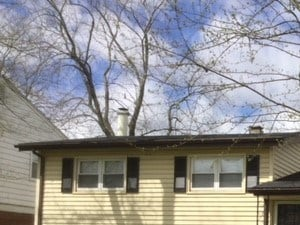 634 Lexington Dr 3 Beds House for Rent Photo Gallery 1