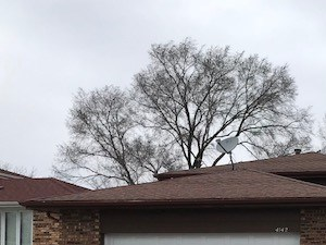 4142 W 178th Street 3 Beds House for Rent Photo Gallery 1