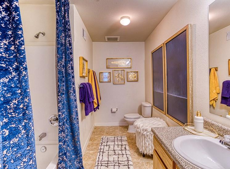 Bathroom with blue interior decor