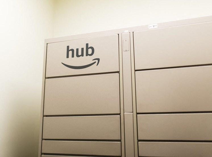 Amazon hub packaged lockers