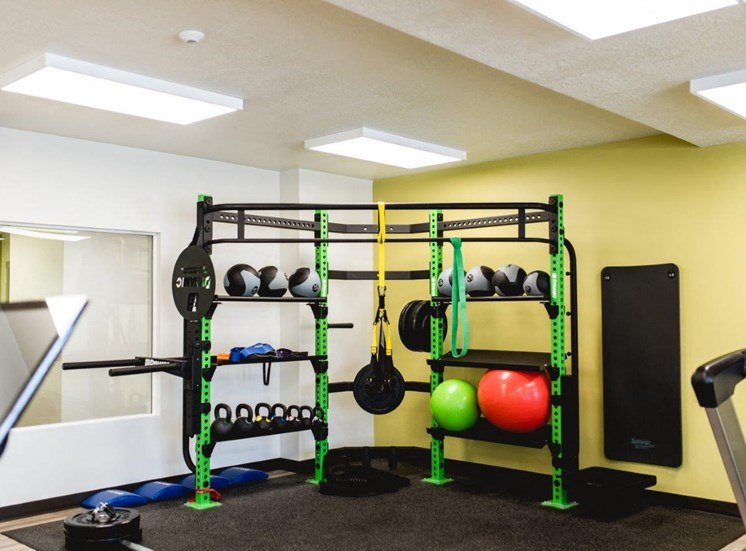 Fitness center with exercise balls