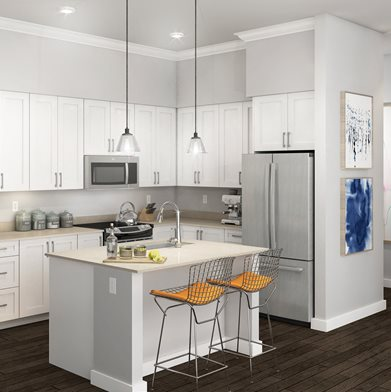 Lux Apartments_Bellevue WA_Rendered White Kitchen