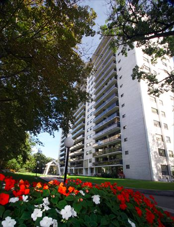 22 Oakmount Studio-2 Beds Apartment for Rent Photo Gallery 1