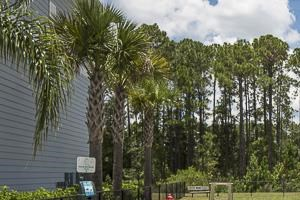 Andros Isles Luxury Apartments Daytona Beach, FL Dog Park