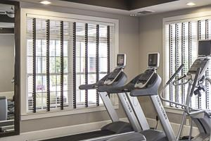 Andros Isles Luxury Apartments Daytona Beach, FL Fitness Center