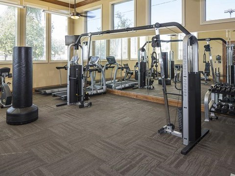 Emerson Park Apartment Homes in Webster, TX Fitness Center