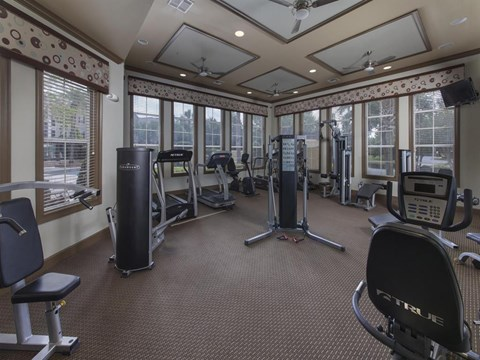 Heritage on Millenia Apartments in Orlando, FL Fitness Center