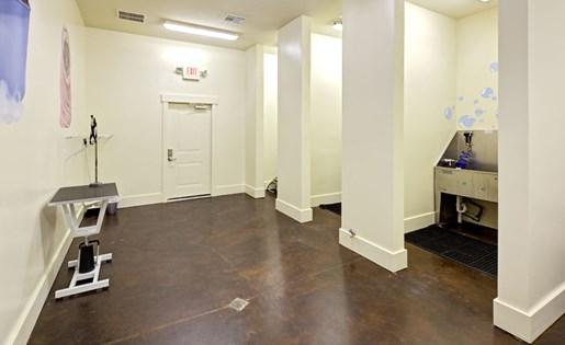 Pet spa at Lofts at Weston Lakeside Apartments in Cary, NC
