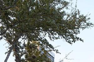 Evolve @ 1604 Apartments   San Antonio, Texas