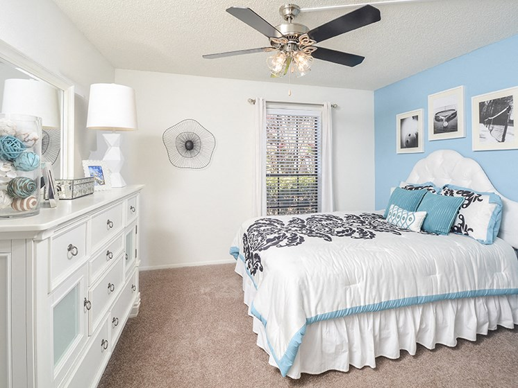 Large Windows and Carpeted Bedroom