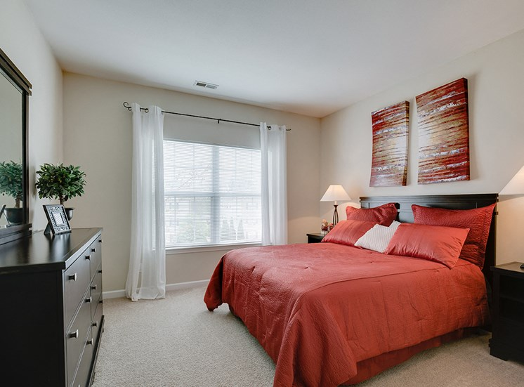 Carpeted Bedroom with Large Window