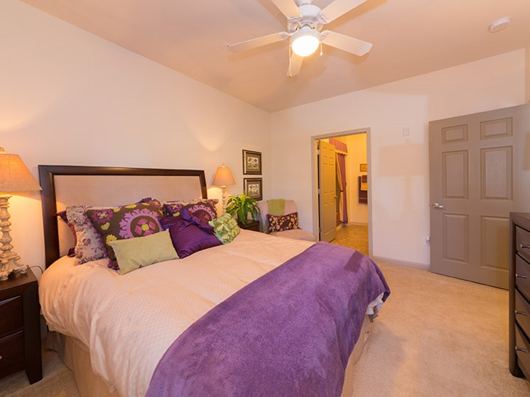 Carpeted Bedroom with Ceiling Fans